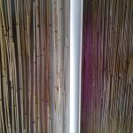 deliaca_stena_bambus_1.jpg
